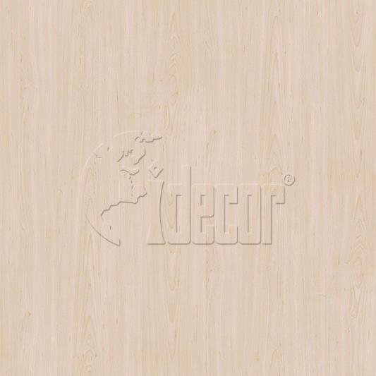 40608 Maple