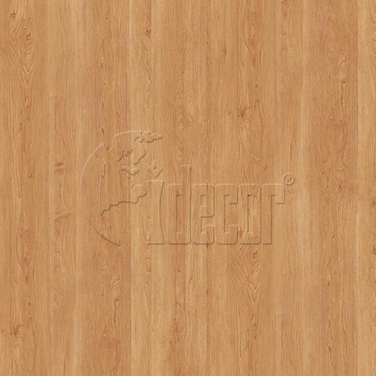 40611 Maple