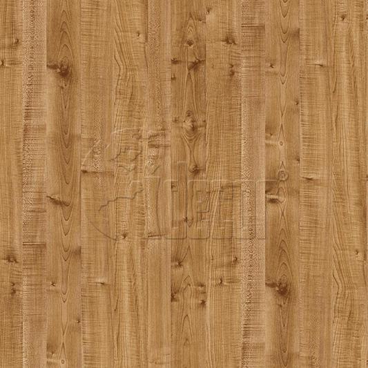 40623 Maple
