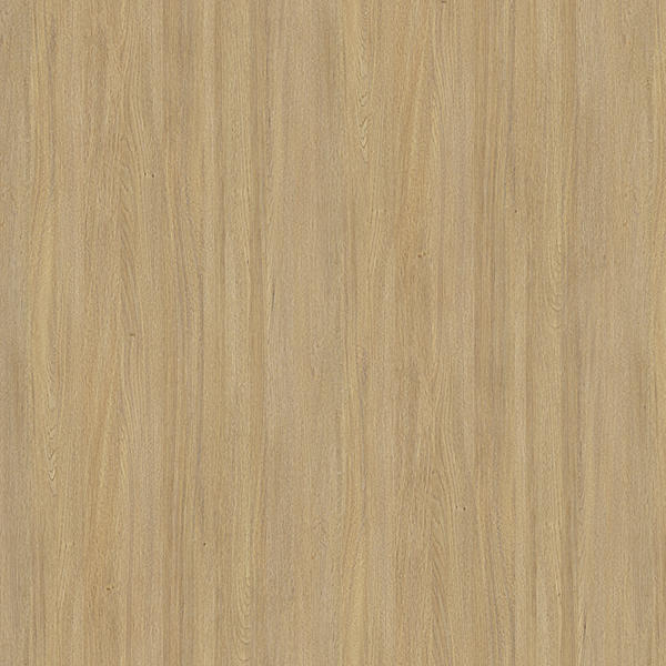 tree decorative base paper cappadocia for school I.DECOR-1
